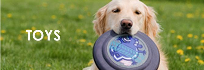 犬用おもちゃ 卸売 輸入