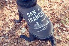 画像5: 【 California Vintage 】犬服 タンクトップ San Francisco  (5)