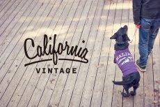 画像9: 【 California Vintage 】犬服 タンクトップ Malibu  (9)
