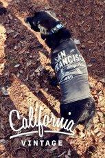 画像2: 【 California Vintage 】犬服 タンクトップ San Francisco  (2)