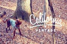 画像5: 【 California Vintage 】犬服 タンクトップ Yosemite (5)