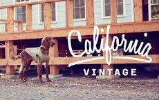 画像10: 【 California Vintage 】犬服 タンクトップ Yosemite (10)