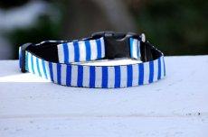 画像2: 【Isabella Cane】Stripe  首輪 (2)