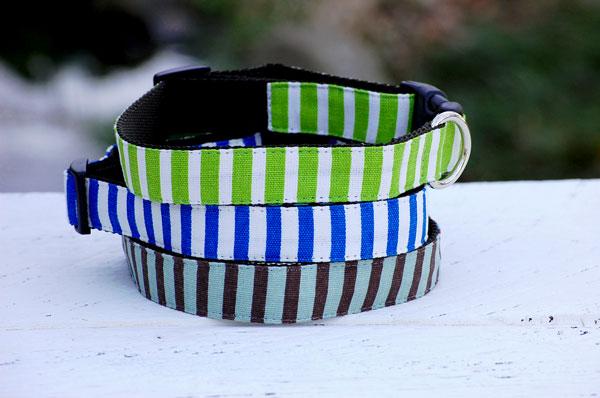 画像1: 【Isabella Cane】Stripe  首輪 (1)